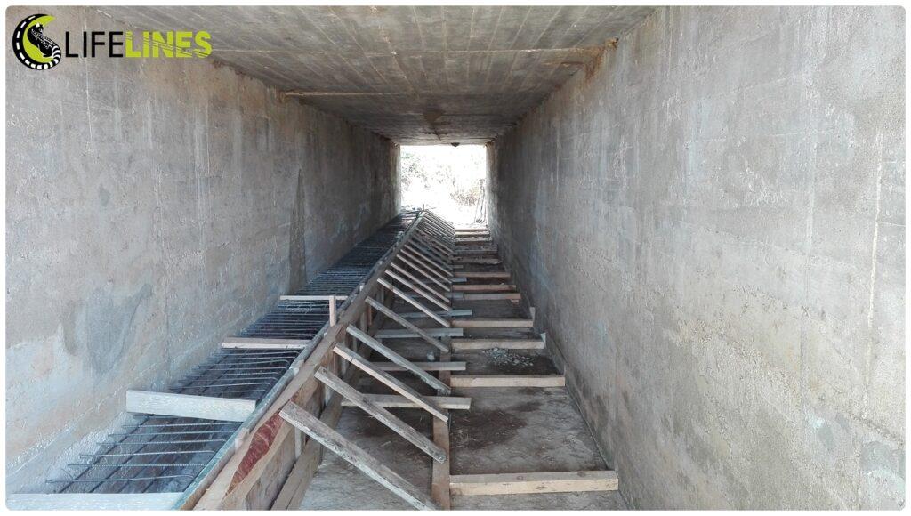 Construção de um passadiço para adaptação de uma passagem hidráulica para conectividade e mitigação de atropelamentos. Foto Pedro Costa